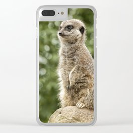 Slender Tailed Meerkat Clear iPhone Case