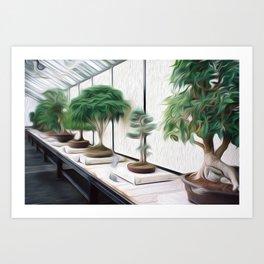 Bonsai Trees Art Print