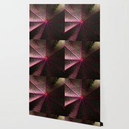 # 206 Wallpaper