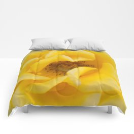 Rose Garden Three Comforters