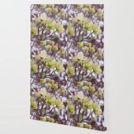yellow dogwood flowers on black maple bokeh Wallpaper