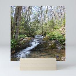 mountain stream in May Mini Art Print