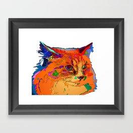 Stella The Cat. Pet Series Framed Art Print