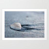 seashell Art Prints featuring Seashell by Courtney Burns