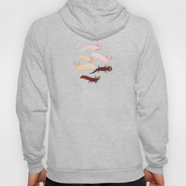 Cute orange pink brown Axolotl Cartoon character (Mexican salamander, Ambystoma mexicanum) Hoody