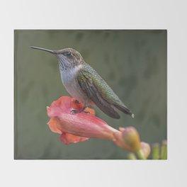 Humming bird resting on a flower Throw Blanket