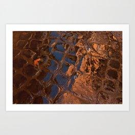 Coppery Cobble Stones Art Print