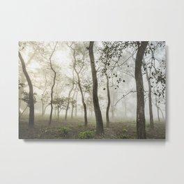 Chitwan national park forest Metal Print