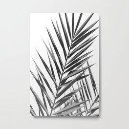 Palm Leaf No3 Metal Print