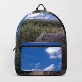 Landscape rock Backpack