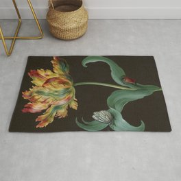 Barbara Regina Dietzsch - Tulip with butterfly and maize - before 1783 Rug