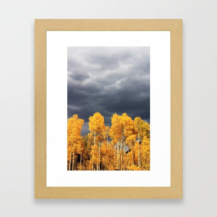 Golden Aspens and an Impending Storm Framed Art Print