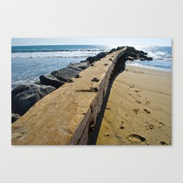 Beach Wandering  Canvas Print