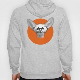 Fennec Fox wearing glasses Hoody