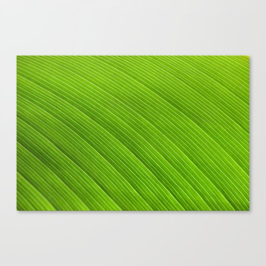 Green 8869 Canvas Print