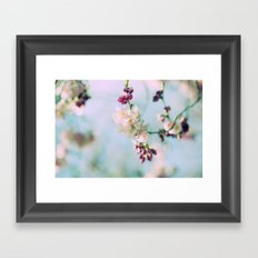 Cherry Blossoms pink Pastels Framed Art Print