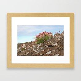 Giant's Causeway flowers Framed Art Print