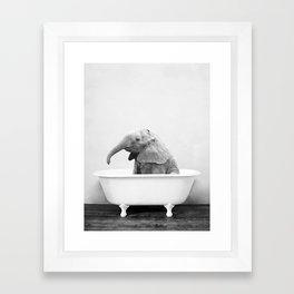 Baby Elephant in a Vintage Bathtub (bw) Framed Art Print