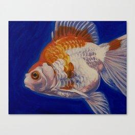 Ryukin Goldfish I Canvas Print