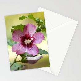 Hardy Hibiscus Stationery Cards