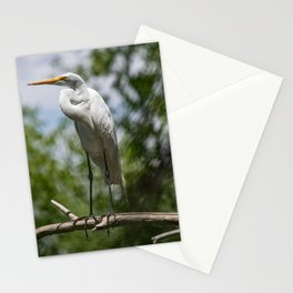 Great Egret - Utah Stationery Cards