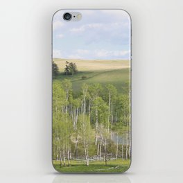 Lake and trees landscape iPhone Skin
