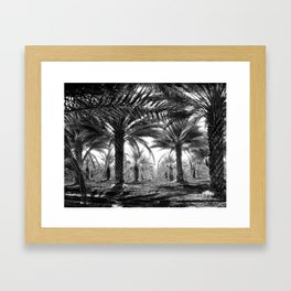 Vintage Palms Trees : Coachela Valley California 1937 Framed Art Print