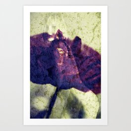 Nude Art Picture - Trapped in the poppy Art Print