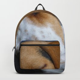 Beagle Dog Sleeping Backpack