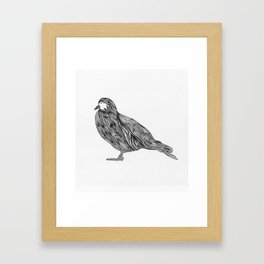 Pajaro Framed Art Print