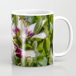 praying lily Coffee Mug