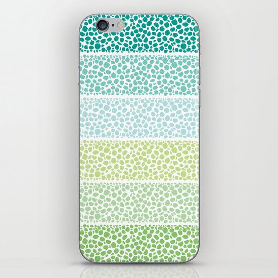 Zen Pebbles iPhone & iPod Skin