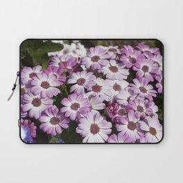 Cineraria Pink Laptop Sleeve