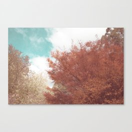 Beautiful Day in Autumn Canvas Print