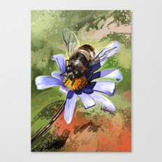Bee on flower 18 Canvas Print