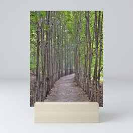 The Long And Winding Road Mini Art Print
