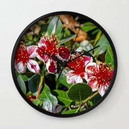 Beautiful Pineapple Guava / Guavasteen Flowers Wall Clock