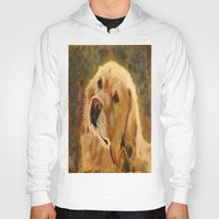 golden retriever Hoodies featuring Golden Retriever by Tidwell