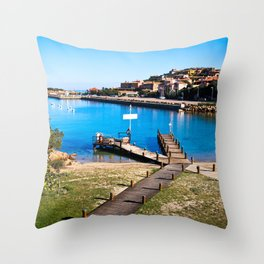 # 202 Throw Pillow