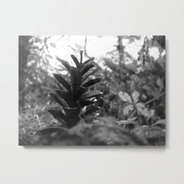 Nature Standing Tall Metal Print