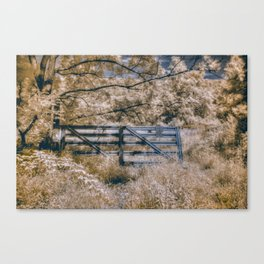 Infrared Fence Canvas Print