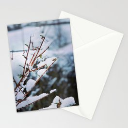 Early spring leaves covered by snow Stationery Cards