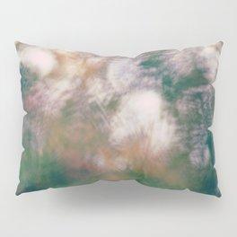 #216 Pillow Sham