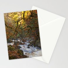 Fixtures Stationery Cards