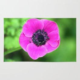 Pink Poppy Rug
