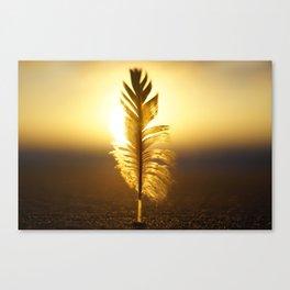 Soft sunset Canvas Print