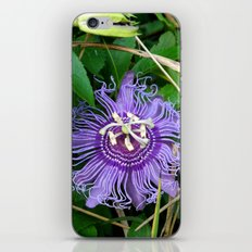 Passion vine flower iPhone & iPod Skin