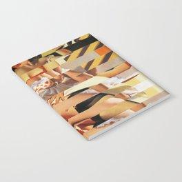 Glitch Pin-Up Redux: Vanessa Notebook