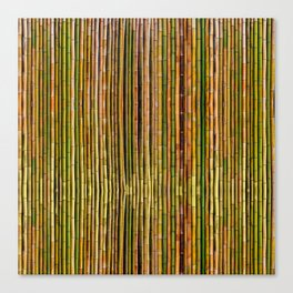 Bamboo fence, texture Canvas Print
