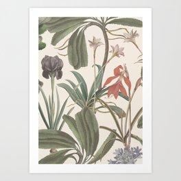 Botanical Stravaganza (variant). Art Print